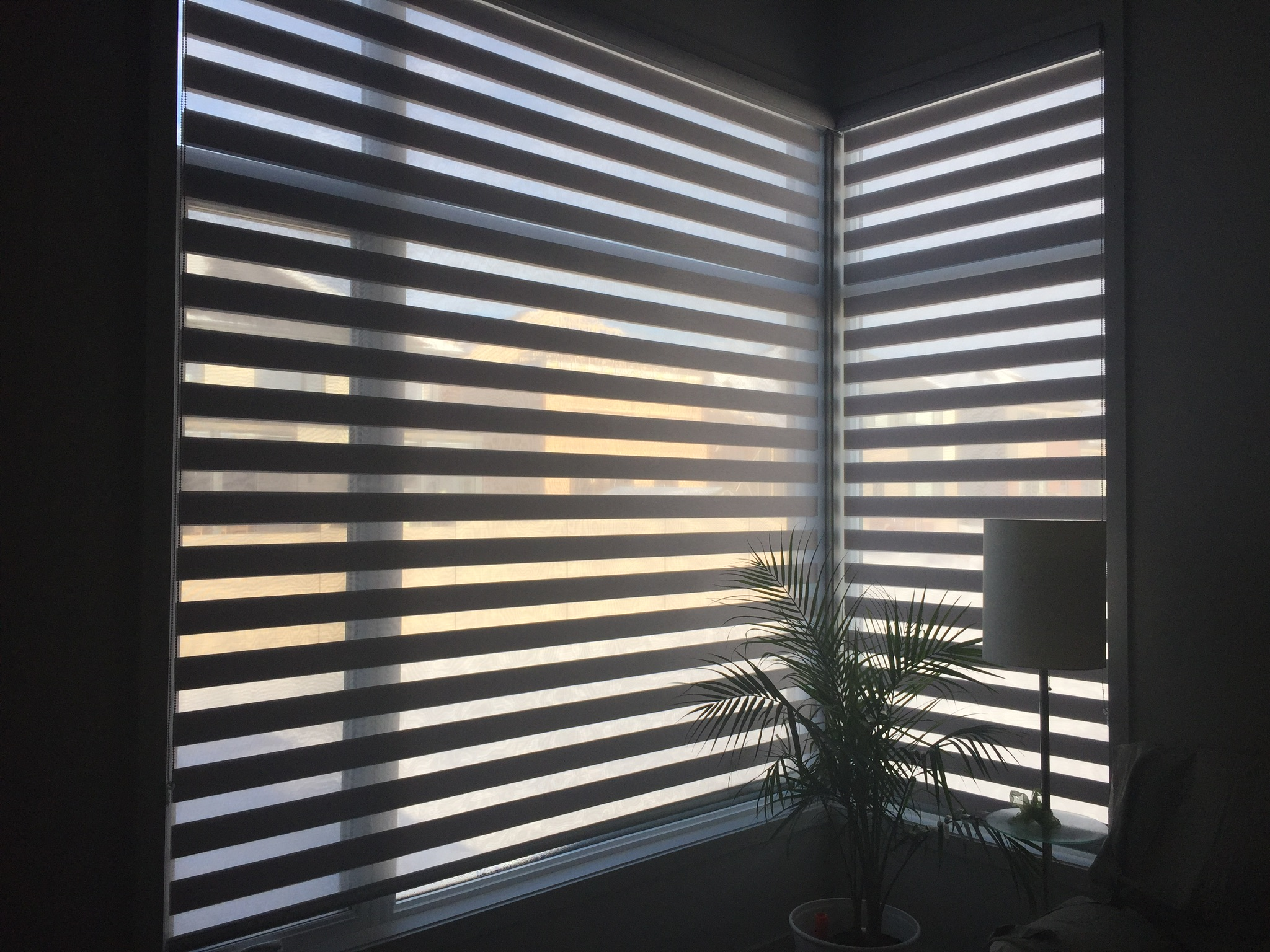 Image Result For Pleated Roman Shades